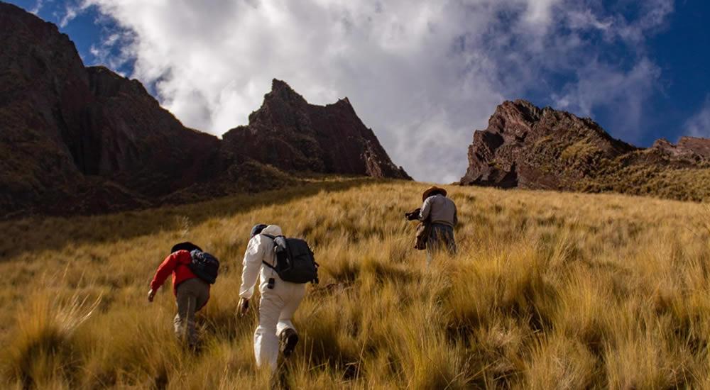 Climbing the Pallay punchu apu tacllo mountain